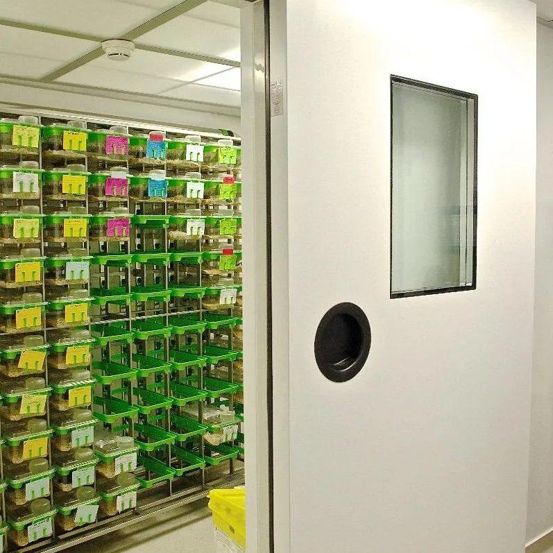 Installation de chambre froide et de salle blanche à Wasselonne │ ISOMAT